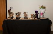 244A3812 Trophy Table